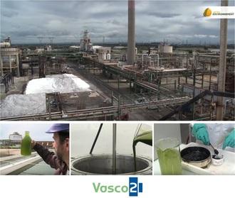Projet VASCO2 - Reportage vidéo d'Actu Environnement par Batiste Clarke