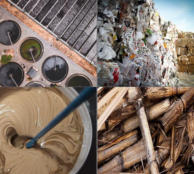 Valorisation biomasse, déchets et effluents